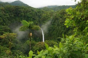 La Fortuna Waterfall. One of the most beautiful Cataratas - Costa Rica