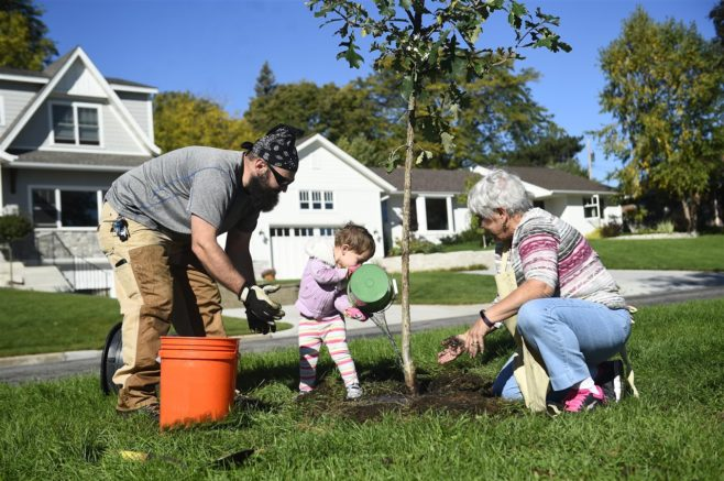 10 reasons to plant more trees There are approximately 2 million reasons to love trees humans need trees much more than trees 5 reasons not to underestimate the power of plants and trees.